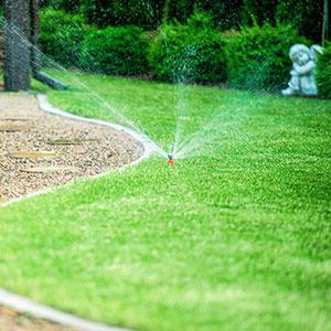 Landscape Irrigation Inspection